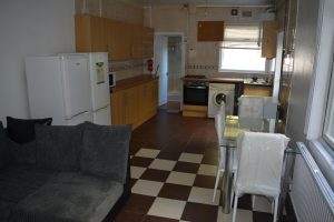 PROFESSIONAL HOUSE-SHARE MALEFANT ST. OFF CRWYS & FAIROAK RD