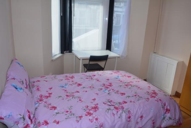 PROFESSIONAL HOUSE-SHARE DIANA ST. OFF ALBANY RD ALL INCLUSIVE